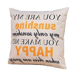 MChoice 17 x 17 Inch Throw Pillow Case, You are my Sunshine